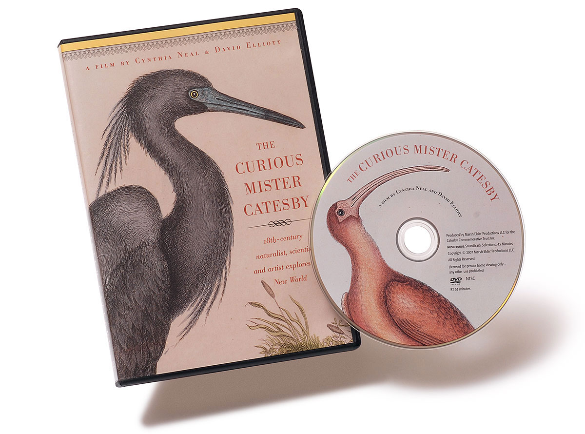The Curious Mister Catesby DVD and case